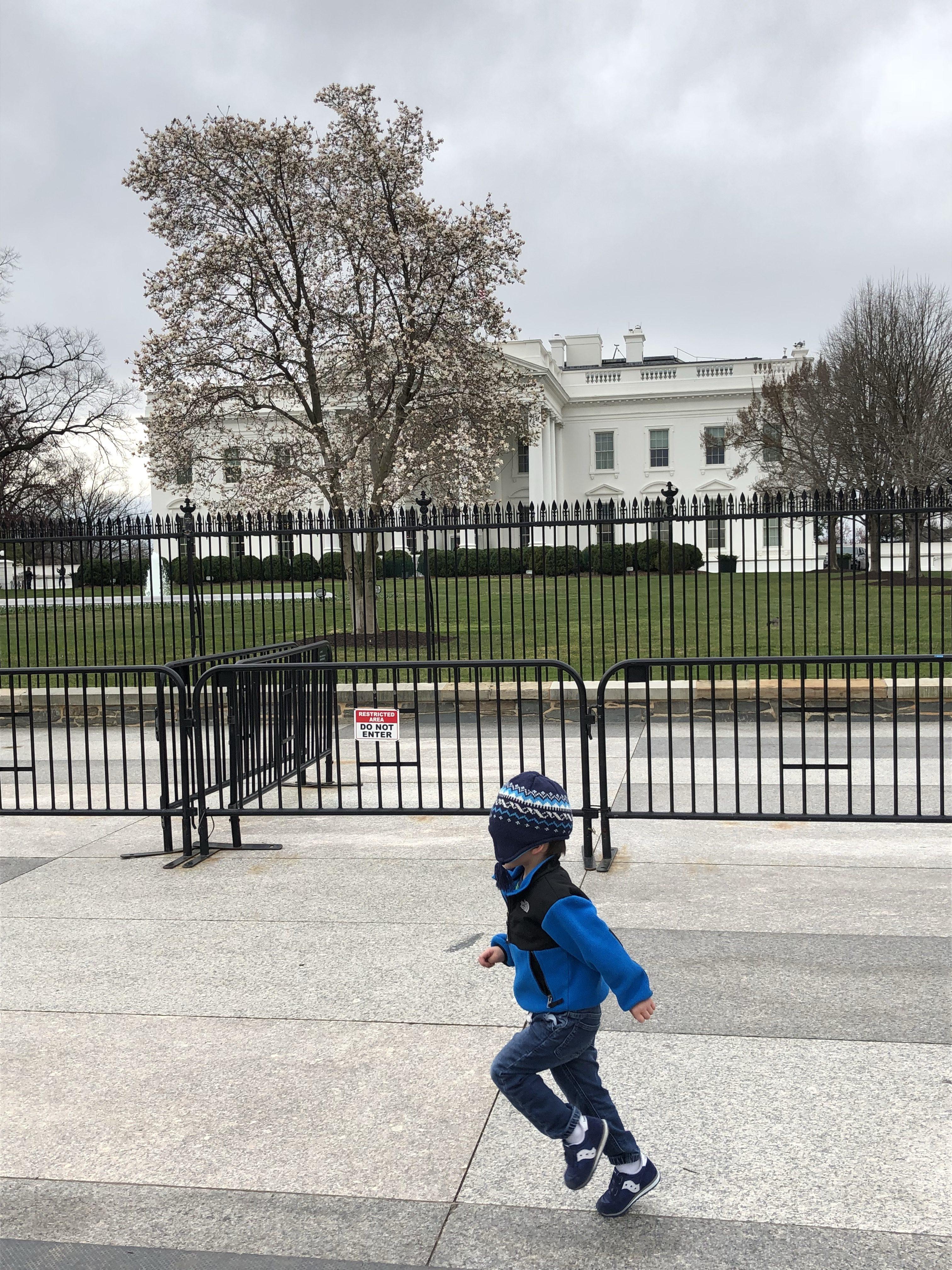 White House Tour With Kids